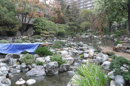 コミュニティーメンバーの「集う庭園」に生まれ変わった日本庭園「清流苑」