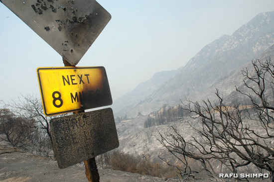 Road signs stand charred along Angeles Crest Highway near Mount Wilson Monday, scorched by the Station Fire, which continued to rage out of control. Containment is not expected for two weeks. (MICHAEL HIRANO CULROSS/Rafu Shimpo)