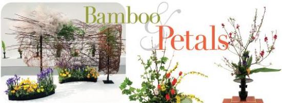 bamboo and petals