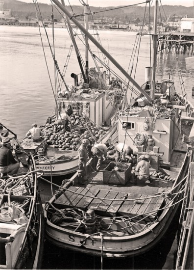 Fishing boats unload their catches of abalone, which became popular in Monterey and introduced the delicacy to many across the country.