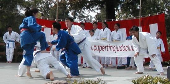 cupertino-judo