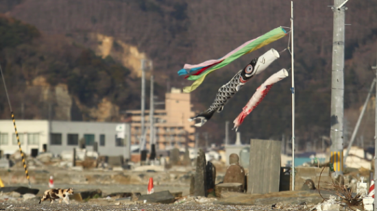 Koinobori (carp banners) amid the devastation in the Tohoku region.