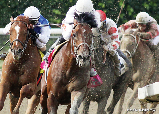 Gallant Stables' Majestic Harbor and jockey Tyler Baze win the Grade III Tokyo City Cup Race on March 29 at Santa Anita Park.
