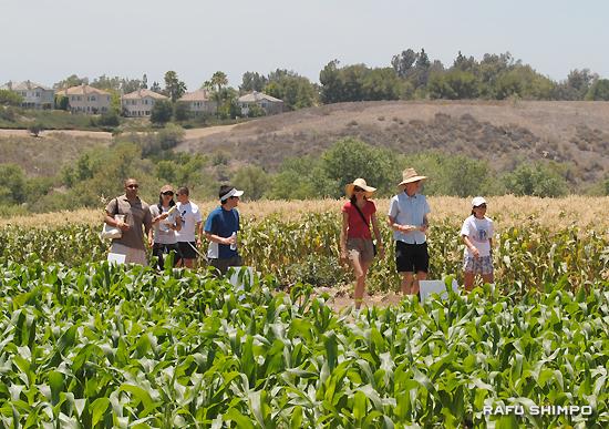 青空の下、新鮮な野菜を試食しながら農園散策を満喫する参加者