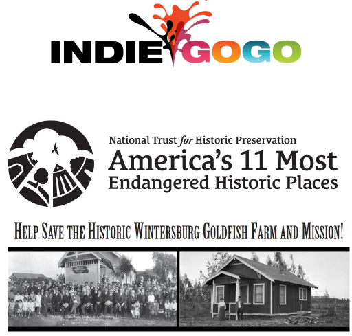 Indiegogo cropped