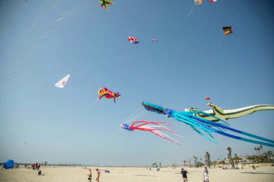 A scene from last year's KIte Festival.