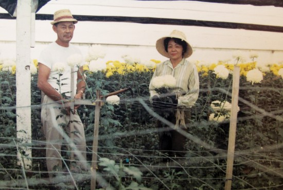 Shig and Mits Muranaka harvest flowers at the farm in Yorba Linda. They would work the farm together, as they raised four children.