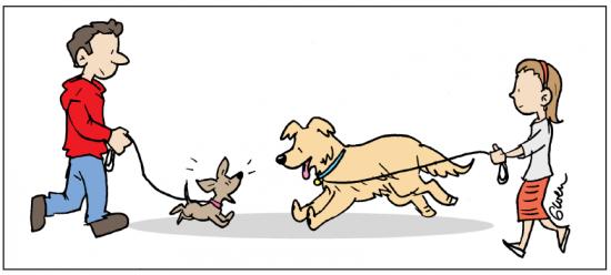dogs (gwen)