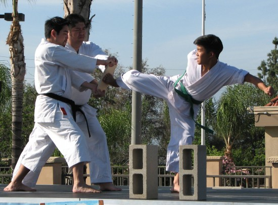 Members of Eibukan Goju Ryu Karate Do broke boards and cinder blocks.