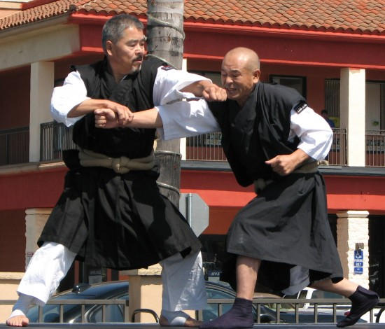 Shorinji Kempo demonstration.