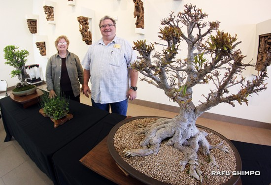 An exhibition by Kofu Bonsai Kai.