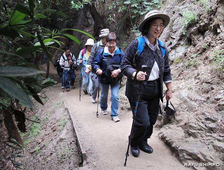 一脚などを杖代わりにし、滝を目指して山を登る参加者