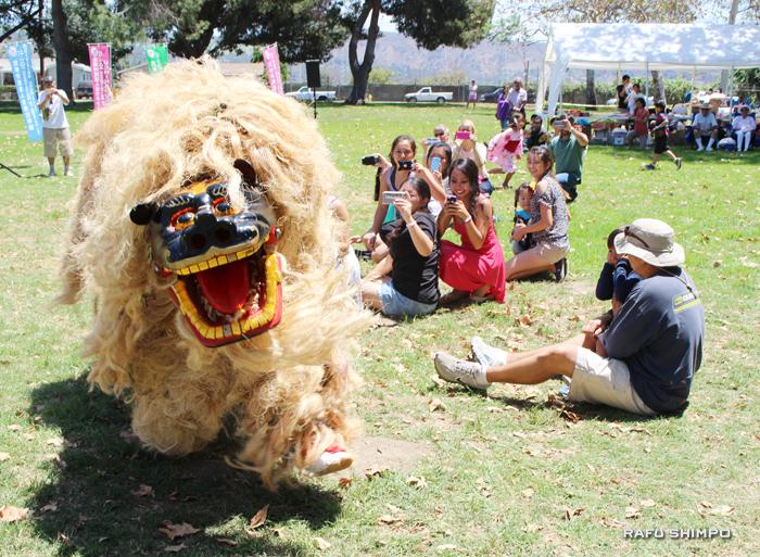芝生を駆け巡り子どもたちと戯れる金武(きん)町伝統の獅子舞