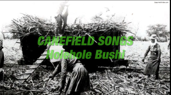 canefield songs