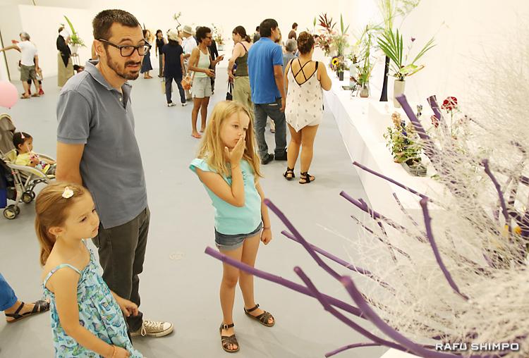 美しい作品29点を披露した「いけばな教授会」の展示