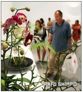 A scene from last year's ikebana show. (MARIO G. REYES/Rafu Shimpo)
