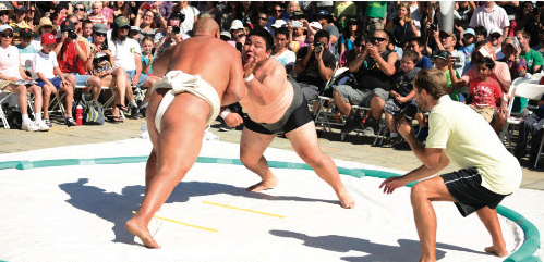 sumo day cropped