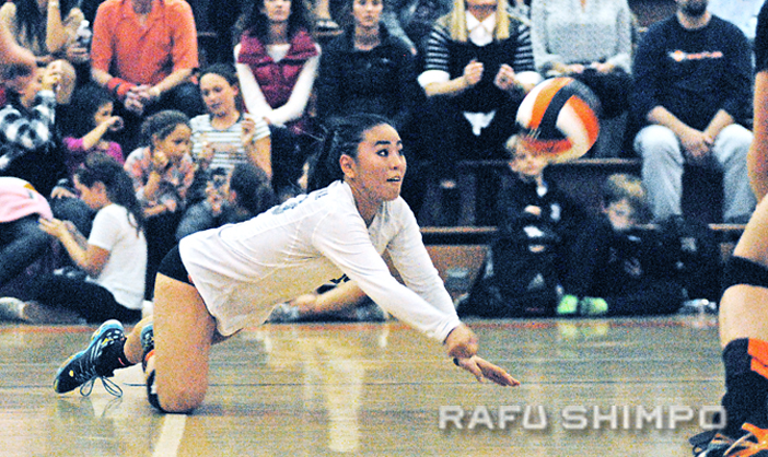 South Pasadena libero Madison Hirano dives for one of her 18 digs, during Tuesday's CIF playoff match at South Pas. The host Tigers defeated visiting Paso Robles, 3-0, and will face Westridge in the second round on Thursday. (MIKEY HIRANO CULROSS/Rafu Shimpo)