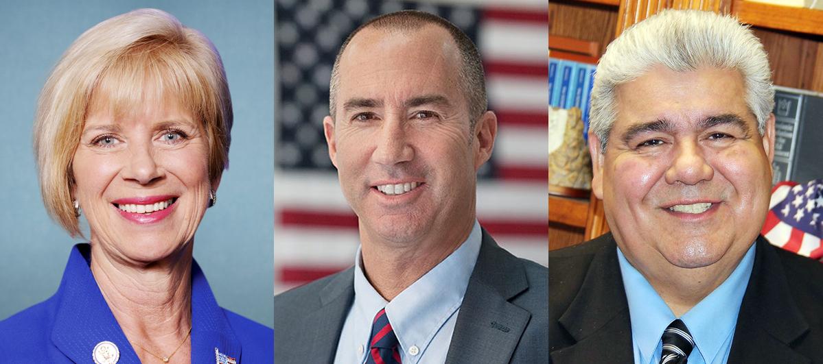ジャニス・ハーン、スティーブ・ナポリタノ、ラルフ・パチェコの各候補