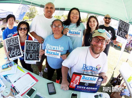 bernie sanders volunteers