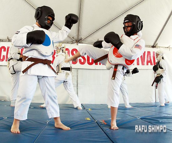 david torres kempo karate