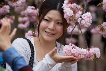ガーセッティー氏が日本で撮影した写真で、優しく桜の花を包み込む日本人女性(ギル・ガーセッティー氏提供)