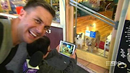 Beau Ryan mocking a Chinese Australian taking pictures of dogs.