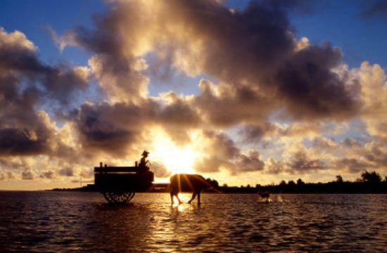 """Water Buffalo Crossing the Shallows,"" 1992, Shokyu Otsuka. Promised gift to the City of Redondo Beach."