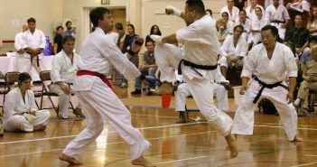 shotokan karate for web