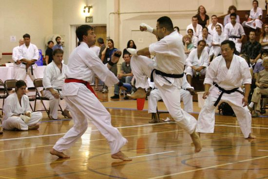 shotokan karate for web