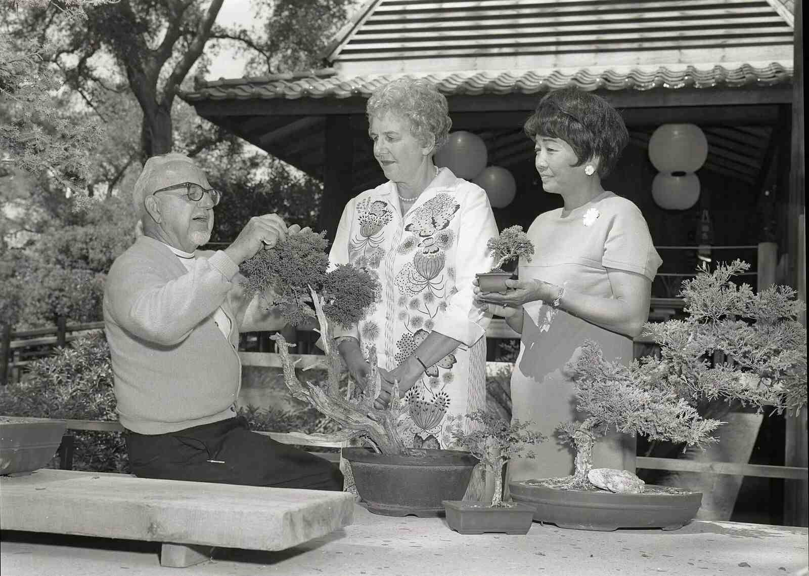 Third annual Bonsai Festival at Descanso Gardens, Sept. 17, 1968. Courtesy of Japanese American National Museum. (Photo by Toyo Miyatake, gift of the Alan Miyatake family)