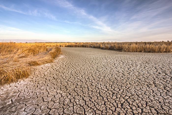 干ばつにより干上がったセントラル・カリフォルニアの土地