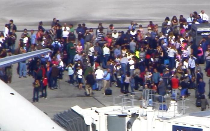 フロリダ州空港で銃乱射事件:5人死亡、13人負傷