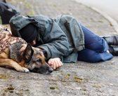 サンタモニカ市:ホームレス人口が増加