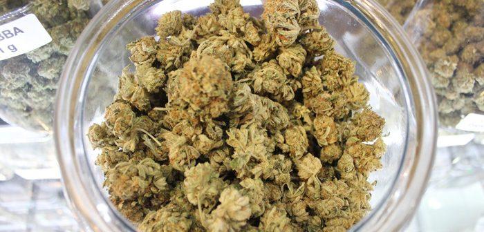 加州、大麻解禁から3カ月:税収6090万ドル