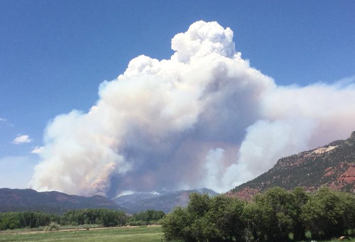 西部12州:43カ所で大規模山火事