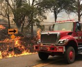 ナパ、ヨーロー両郡で山火事:9万エーカー焼失、出火原因は電気柵